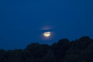 Sorgere della luna