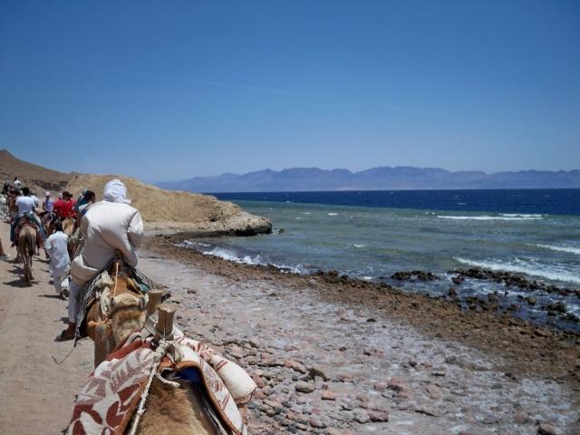 Sharm el Sheikh 530