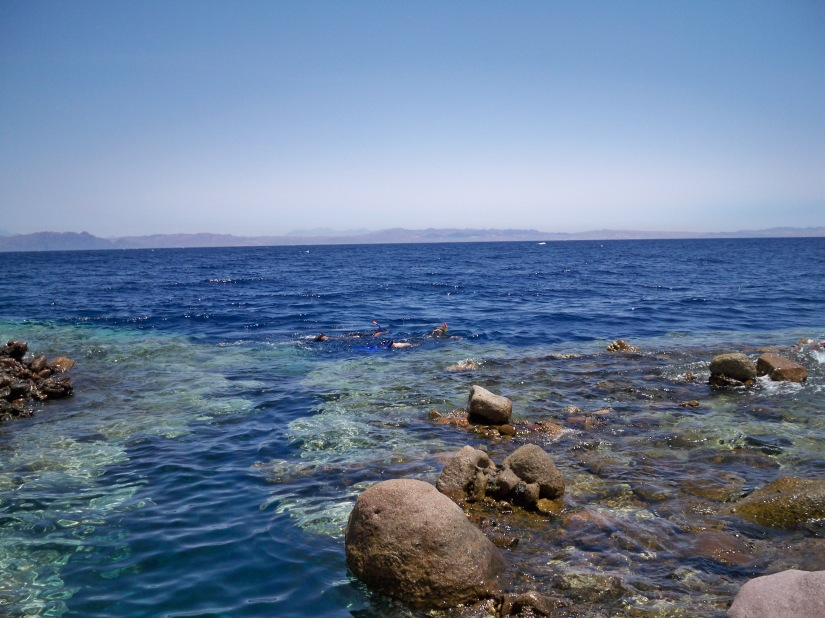 Sharm el Sheikh 537