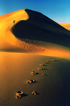 Walter Bonatti, Deserto del Namib, Namibia. AprileMaggio 1972, ©Walter Bonatti/Contrasto